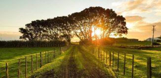 taxe sur les terrains agricoles rendus constructibles